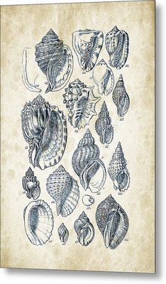 Mollusks - 1842 - 19 Metal Print by Aged Pixel