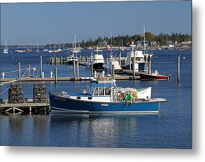 Molly Hock Of Southwest Harbor Metal Print by Juergen Roth