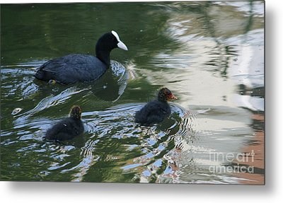 Mom And Babies Metal Print by Valia Bradshaw