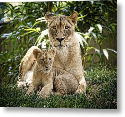 Mom And Baby Metal Print by Cheri McEachin