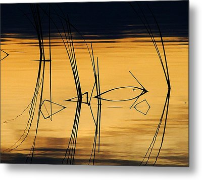 Metal Print featuring the photograph Momentary Reflection by Blair Wainman