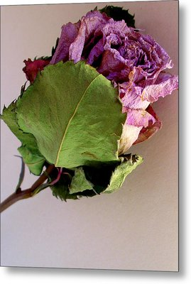 Mom's Rose Metal Print by Fred Wilson