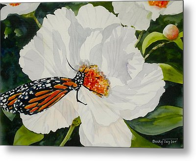 Monarch On A Poppy Metal Print