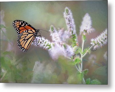 Metal Print featuring the photograph Monarch On Mint 1 by Lori Deiter