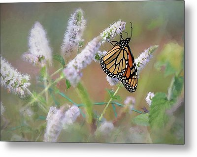 Metal Print featuring the photograph Monarch On Mint 2 by Lori Deiter
