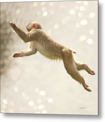 Metal Print featuring the photograph Monkey Jump by Roy  McPeak