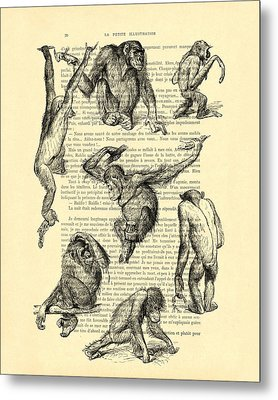 Monkeys Black And White Illustration Metal Print