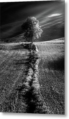 Monochrome Valley Metal Print