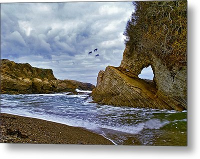 Metal Print featuring the photograph Montana De Oro by Gary Brandes