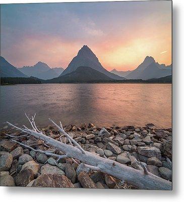 Montana Gold // Swiftcurrent Lake, Glacier National Park  Metal Print by Nicholas Parker