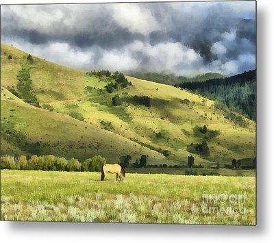 Montana Ranch Landscape Metal Print by Edward Fielding