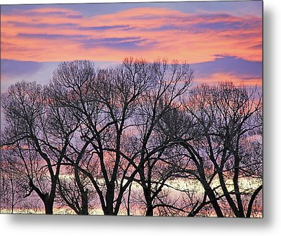 Metal Print featuring the photograph Montana Sunrise Tree Silhouette by Jennie Marie Schell