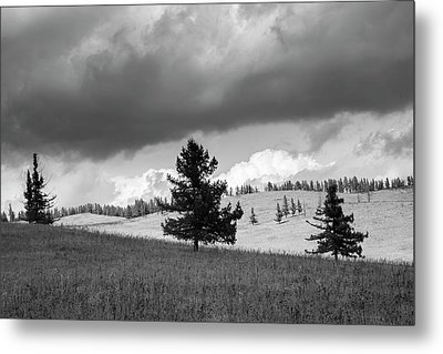 Metal Print featuring the photograph Moody Meadow, Tsenkher, 2016 by Hitendra SINKAR