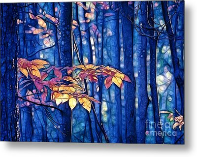 Metal Print featuring the photograph Moody Woods by Aimelle