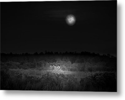 Moon Glow Metal Print by Mark Andrew Thomas