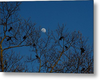 Metal Print featuring the photograph Moon In The Sky 3 by Paul SEQUENCE Ferguson             sequence dot net