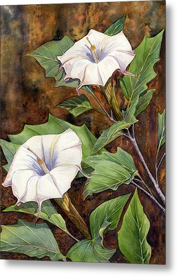 Moon Lilies Metal Print by Catherine G McElroy