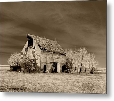 Moon Lit Sepia Metal Print by Julie Hamilton
