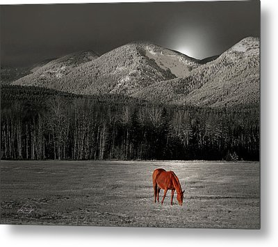 Moon Of The Wild Horse Metal Print