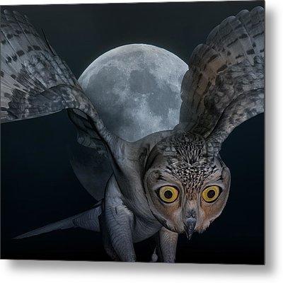 Moon Owl Metal Print by Betsy Knapp