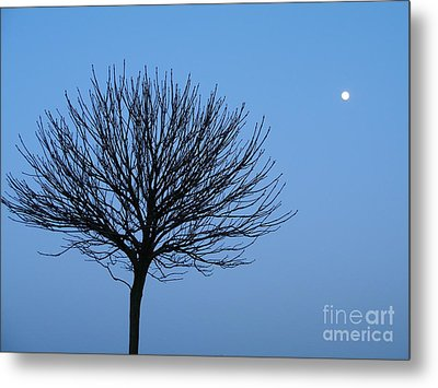 Metal Print featuring the photograph Moon Rise by Michael Canning