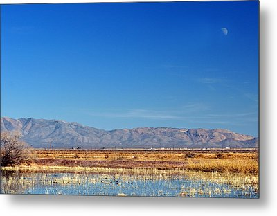 Metal Print featuring the photograph Moon Rising by Barbara Manis