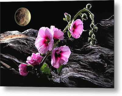 Moon Scape Metal Print by Manfred Lutzius