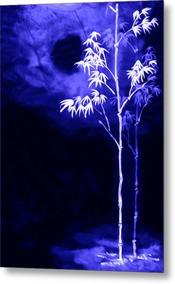 Moonlight Bamboo Metal Print by Lanjee Chee