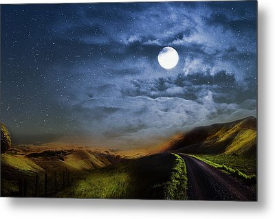 Moonlight Path Metal Print by Swank Photography