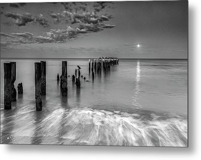 Metal Print featuring the photograph Moonlight Serenade by Mike Lang