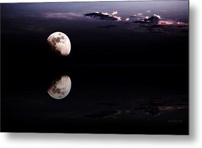 Moonlight Shadow Metal Print by Steve K