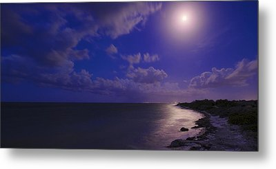 Moonlight Sonata Metal Print