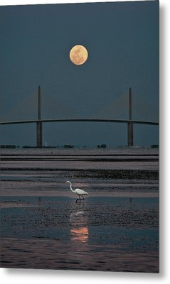 Moonlight Stroll Metal Print