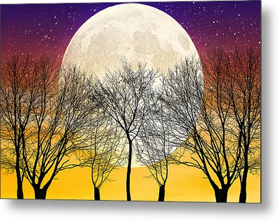 Moonlight Metal Print by Swank Photography
