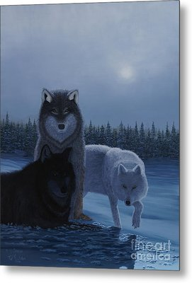 Moonlight Wolves Metal Print
