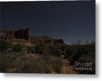 Metal Print featuring the photograph Moonlit Path by Melany Sarafis