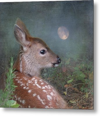 Moonlit Thoughts Metal Print by Sally Banfill