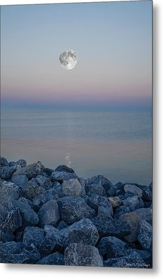 Metal Print featuring the photograph Moonlit Twilight by Shelly Stallings