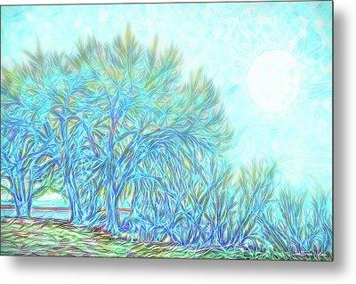 Metal Print featuring the digital art Moonlit Winter Trees In Blue - Boulder County Colorado by Joel Bruce Wallach