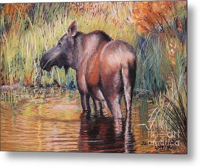 Metal Print featuring the pastel Moose In Alaska by Terri Thompson