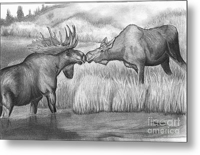 Moose Looking For Love Metal Print by Russ  Smith