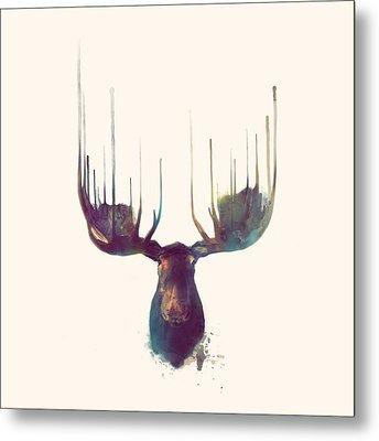 Moose // Squared Format Metal Print