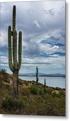 Metal Print featuring the photograph More Beauty Of The Southwest  by Saija Lehtonen