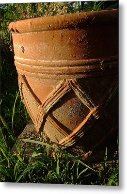 More Than A Planter Metal Print by Ali Dover