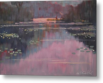 Morning At The Forth Pond Metal Print by Len Stomski