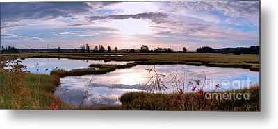 Morning At The Marsh Metal Print