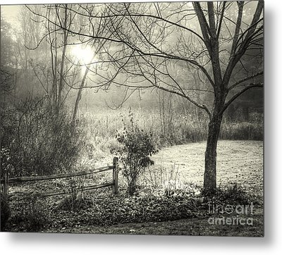 Metal Print featuring the photograph Morning Breaking by Betsy Zimmerli