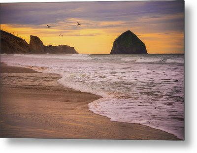 Metal Print featuring the photograph Morning Flight Over Cape Kiwanda by Darren White