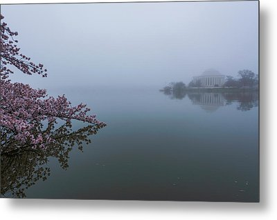 Morning Fog At The Tidal Basin Metal Print by Michael Donahue