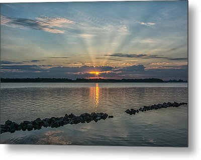Morning Glory Metal Print by Donnie Smith